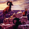 Diorama BIghorn Sheep, from a Disneyland Panavue Slide