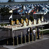 Disneyland entrance, July 1961